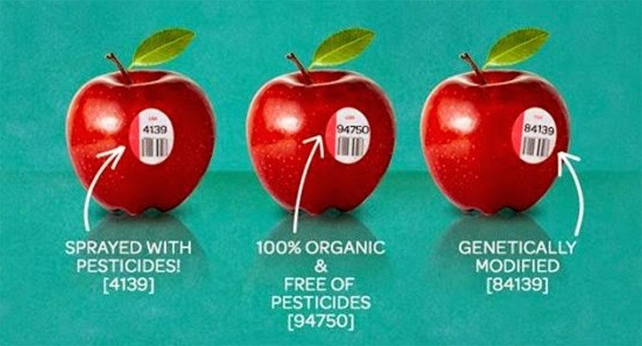 Manzana Organica